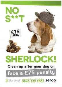 No S**  Sherlock Poster