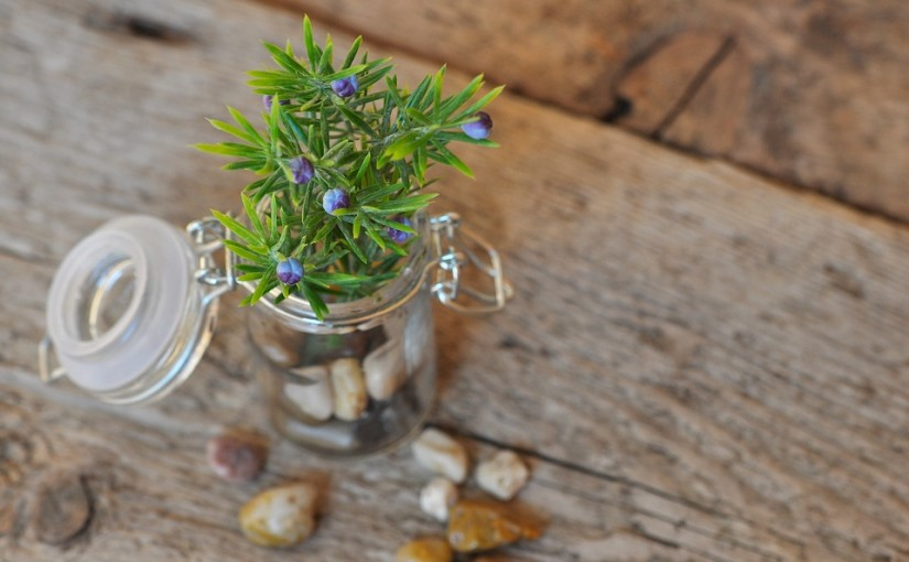 25 Ways To Reuse An Empty Glass Jar The Waste Management Recycling Blog