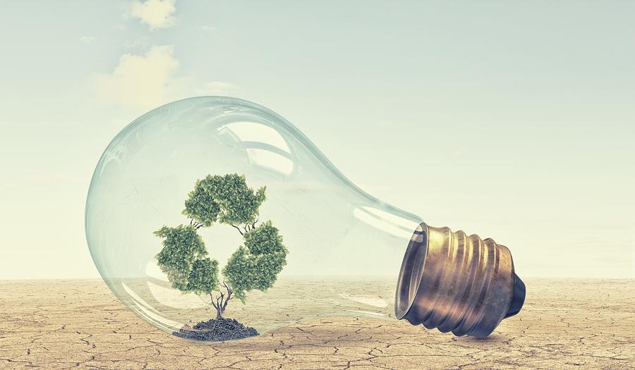 Environmentally friendly lightbulb