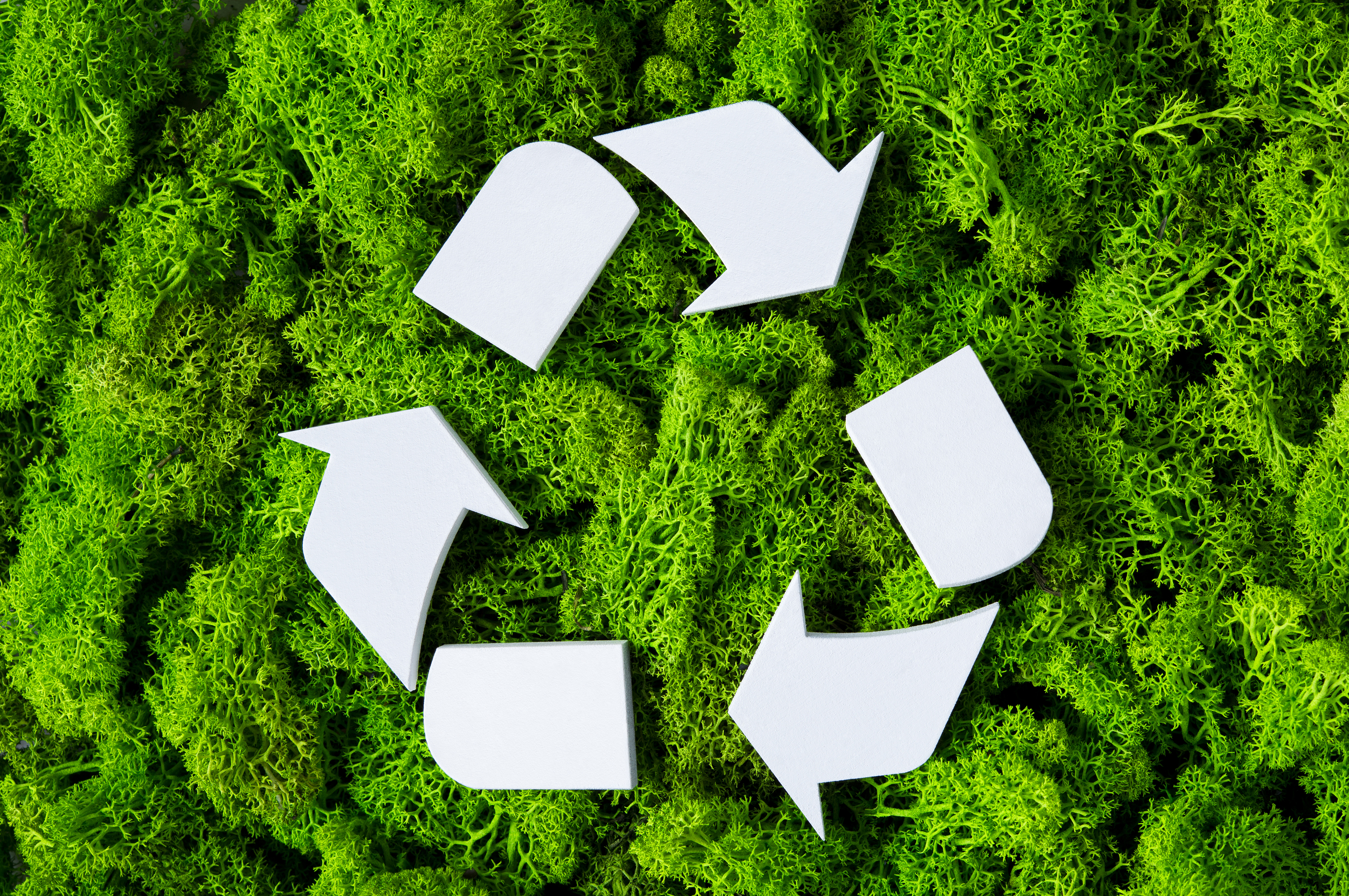How to improve & increase your recycling - The Waste Management & Recycling  Blog