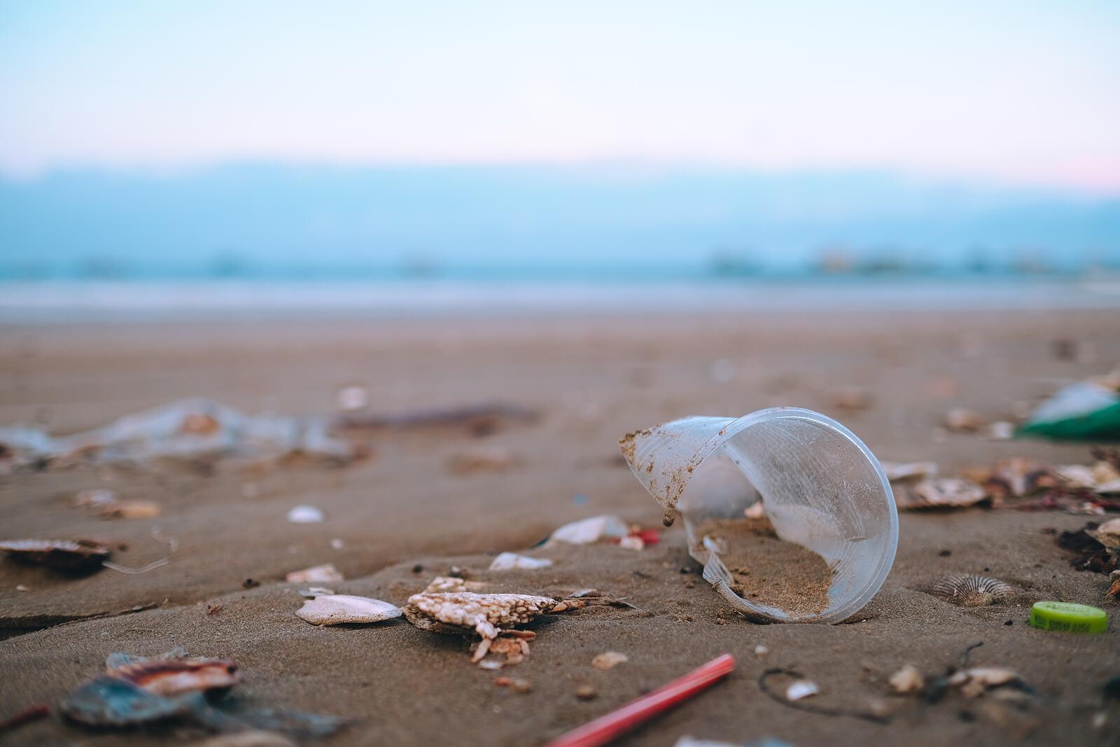 Plastic litter on a sandy beach